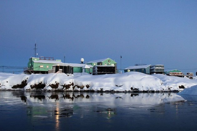Новий дудл від Google. Компанія присвятила заставку 25-річчю антарктичної станції «Академік Вернадський»