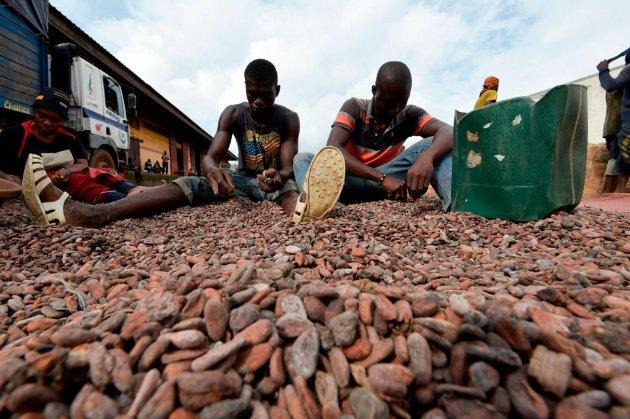 Сучасне рабство. Колишні працівники звинуватили Nestle і Mars у використанні дитячої праці