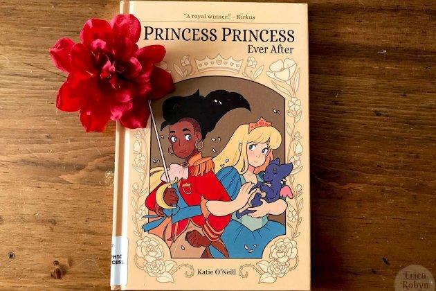 Луцькі депутати вимагають вилучити дитячу книжку «Принцеса+принцеса» з бібліотек