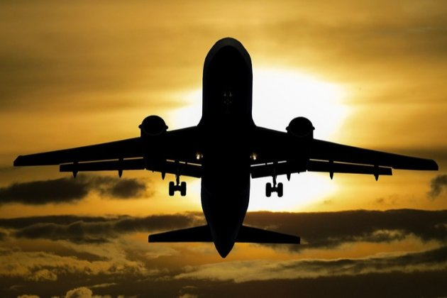 Новий український лоукост Bees Airline отримав право на польоти