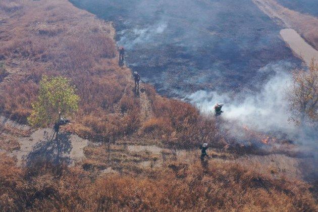 В Україна заборонили випалювати траву і бур'ян. Але лише з червня і без штрафів