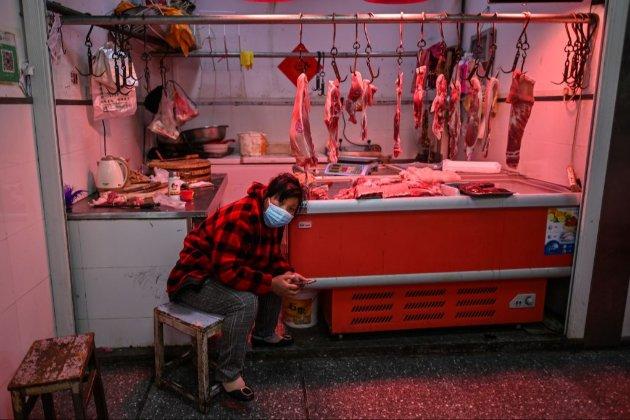 У поширенні COVID винна торгівля продуктами дикої природи в Китаї — джерела у ВООЗ