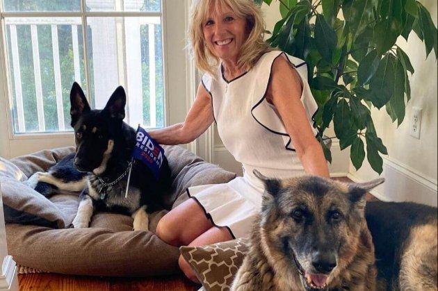 Собак Байдена повернули до Білого дому
