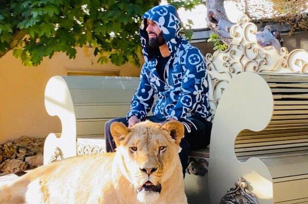 Депутат Харківської міськради від ОПЗЖ задекларував африканського лева