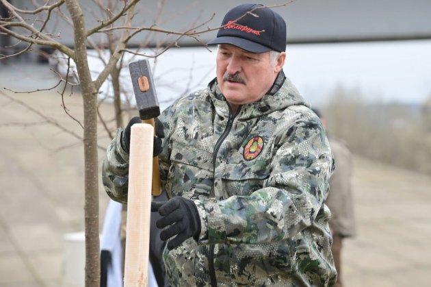 «Слуга народу» Шевченко сказав, що щиро любить Лукашенка і вважає його «харизматиком»