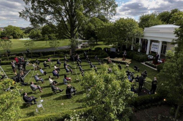 50 тис. американців закликали у петиції Джил Байден відновити сад Білого дому