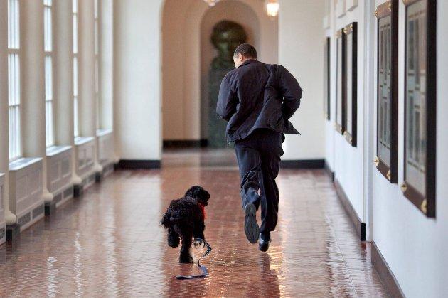 Барак Обама повідомив про смерть «справжнього друга»