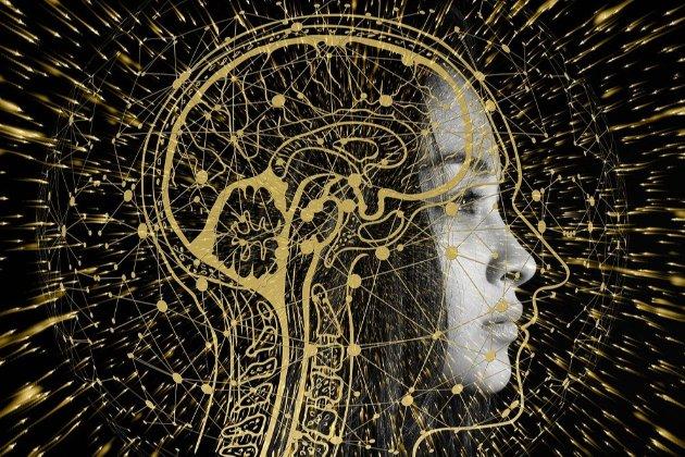 Вчені показали, як думки «рухаються» в людській голові