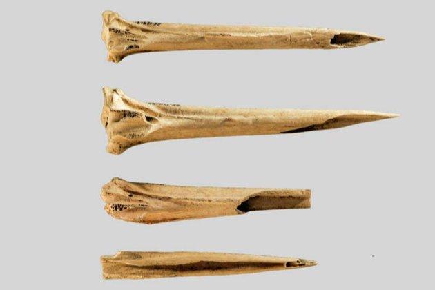 Давні американці наносили перші у світі тату заточеними кістками індички