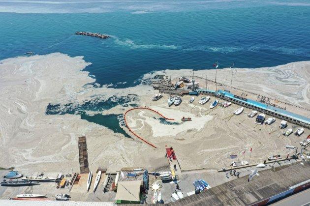 «Гігантська проблема». Мармурове море в Туреччині вкрилося слизом (фото, відео)