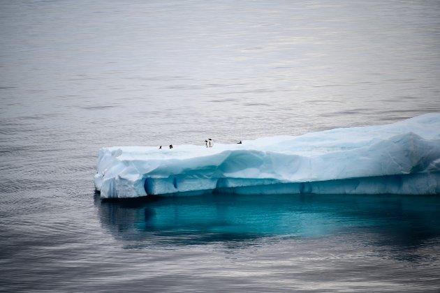 National Geographic визнав існування п'ятого океану та позначатиме його на своїх картах