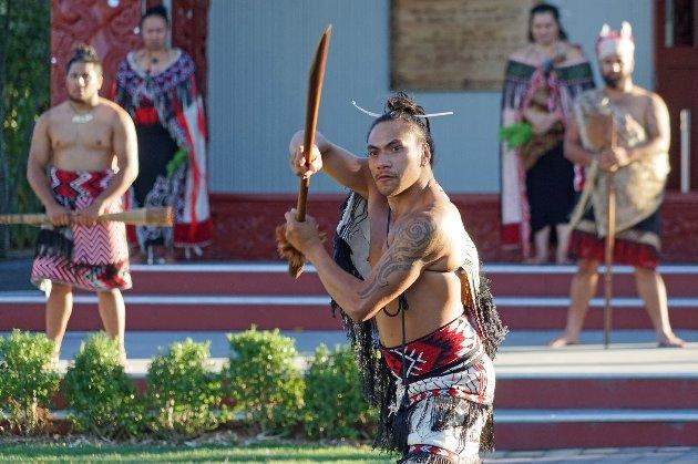 Плем'я маорі з Нової Зеландії могловідкрити Антарктиду ще у VII столітті