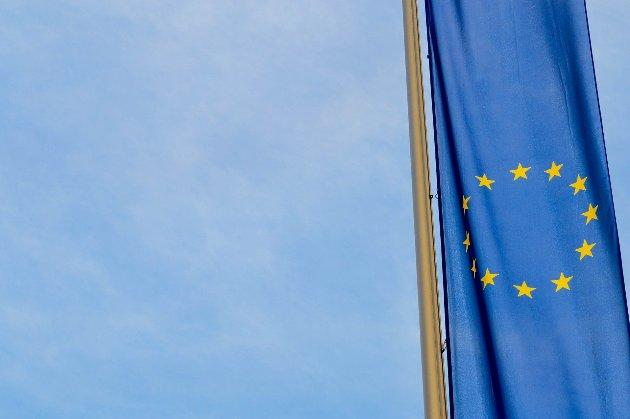 Євросоюз планує ввести санкції проти семи компаній і 71 особи в Білорусі — ЗМІ