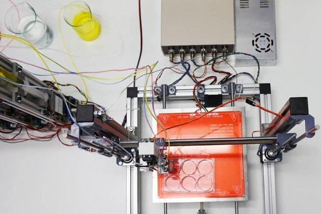 NASA надрукувала на 3D-принтері штучну людську печінку. Її відправлять на МКС