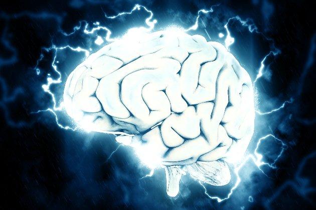 Чоловік видалив частину власного мозку. Тепер він не боїться смерті, висоти та павуків