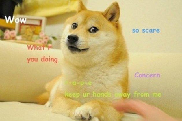 Мем Doge із собакою, який посміхається, продали за $4 млн на аукціоні