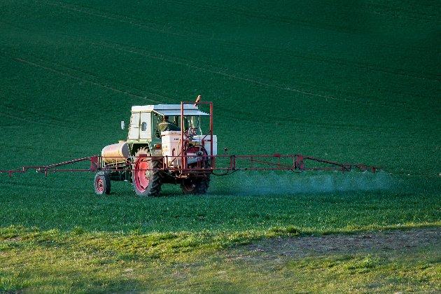 Швейцарія може заборонити використовувати пестициди