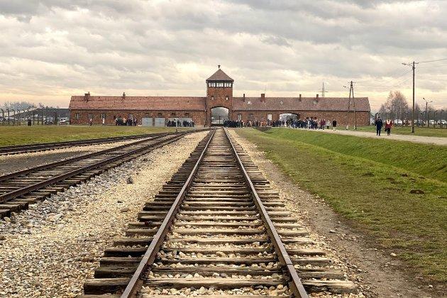 Поляк під час прогулянки знайшов людські останки біля колишнього концтабору Аушвіц