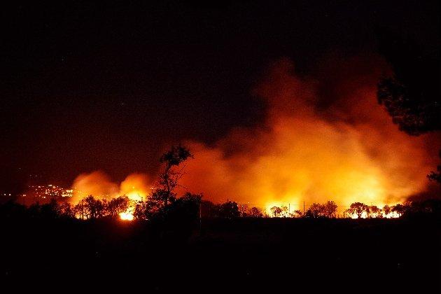 «Найгірші в історії країни». Кіпр потерпає від небачених лісових пожеж