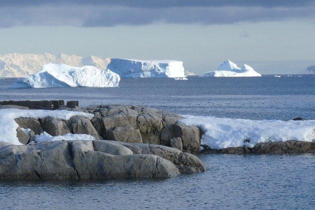 В Антарктиді зафіксували новий температурний рекорд. Востаннє таке було у 2015 році
