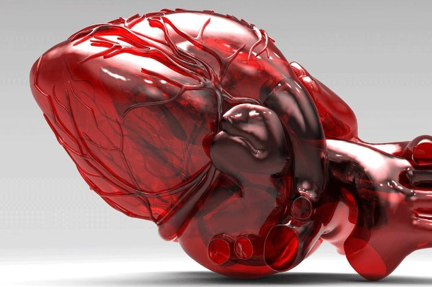 Французька компанія продала перше штучне серце