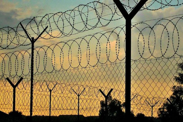 Эстония подарит Литве 100 км колючей проволоки для завершения строительства стены на границе с Беларусью