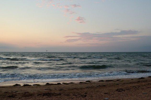 Море в Бердянске непригодно для купания. В воде нашли много инфекций