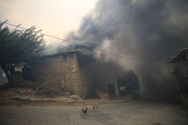 У Туреччині через жахливі лісові пожежі евакуюють туристів з готелів. Влада повідомляє про диверсію