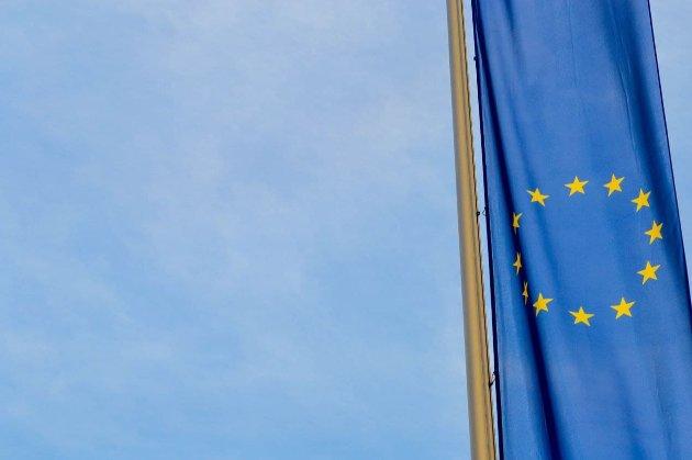 «Ще один акт міжнародного тероризму». Перші європарламентарі відреагували на смерть Шишова