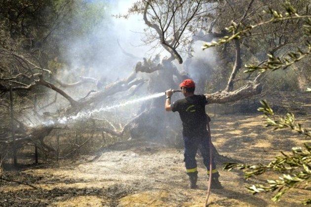 В Греции из-за экстремальной погоды горят леса. Огонь уничтожил дома и повредил энергосистемы