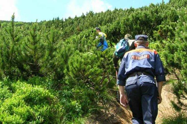 В Карпатах знайшли дітей, які загубилися під час збирання грибів та ягід