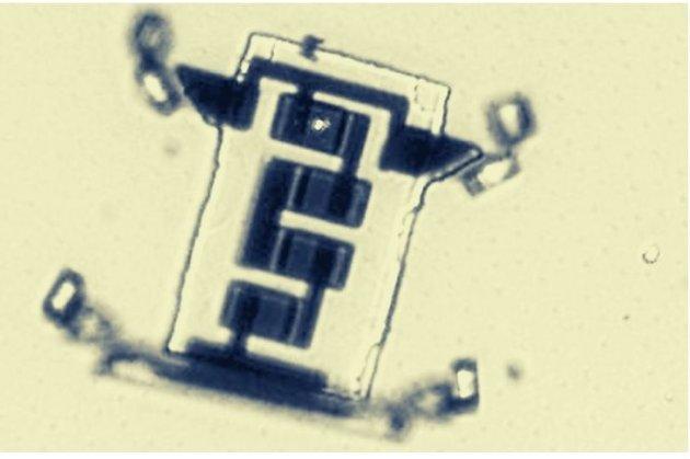 Американські вчені створили мікроскопічного робота, який «ходить»