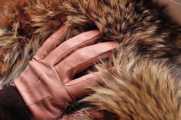 До конца 2022 года бренды Balenciaga и Yves Saint Laurent полностью откажутся от использования меха