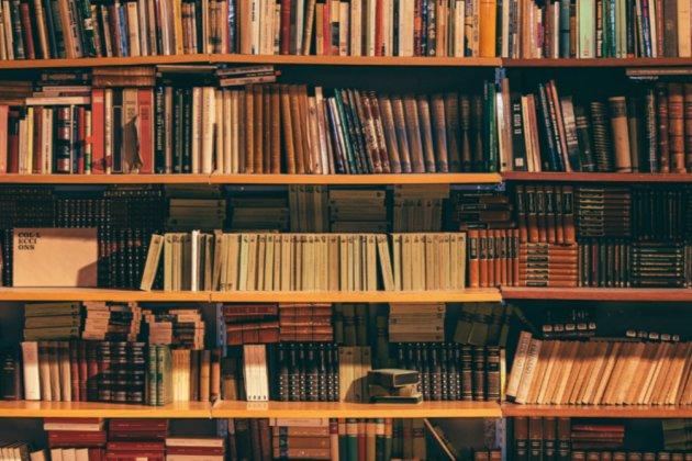 На закупівлю книжок для українських бібліотек з бюджету на 2022 рік не виділено жодної гривні — депутат
