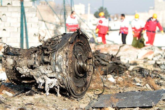 Деякі американці — родичі загиблих у збитому літаку МАУ — подали позов проти Ірану