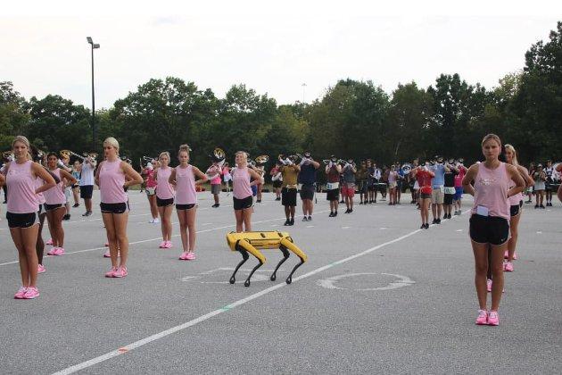 Майже, як Майкл Джексон. Робопес від Boston Dynamics станцював на стадіоні з чирлідерами (відео)