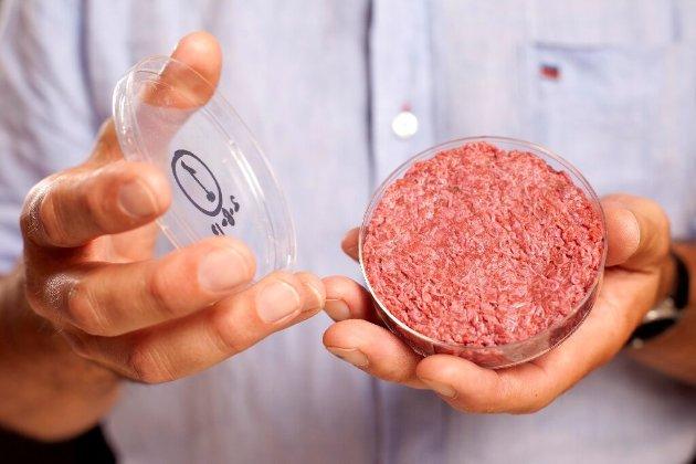 Сингапур першим у світі схвалив продаж «м'яса із пробірки»