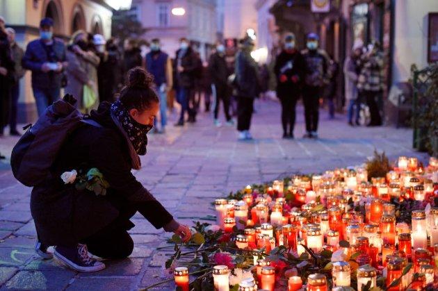 Поліція заарештувала ще двох підозрюваних у зв'язку з нападом у Відні