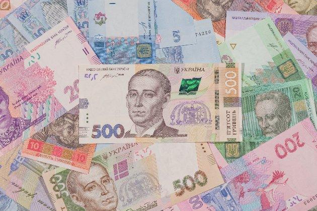 У 2020-му році Україна витратила кожну сьому гривню доходів на погашення держборгу — Рахункова палата