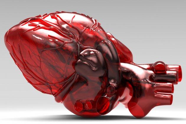 У Європі вперше продаватимуть штучне серце