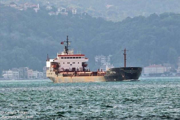 Кулеба запевняє, що МЗС працює над звільненням українців з полону піратів у Нігерії