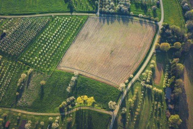 Держгеокадастр передав 2 млн га землі тергромадам