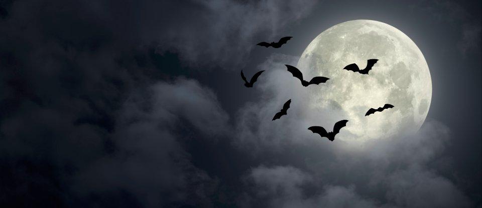 Рік «чорного кажана». Топ-10 подій світової економіки у 2020 році