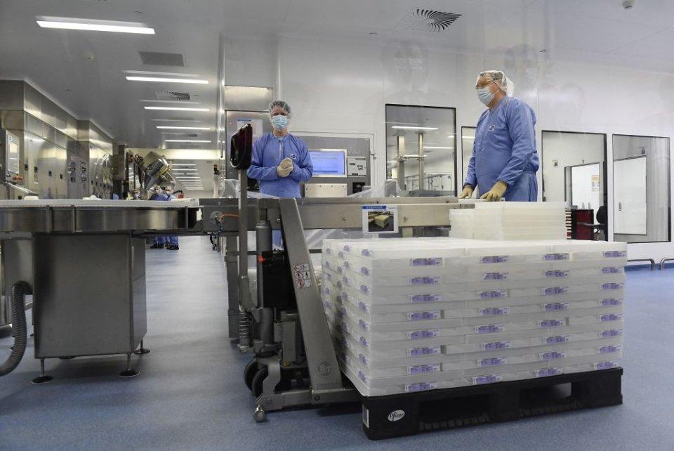 Виробництво Pfizer у Бельгії / Getty Images