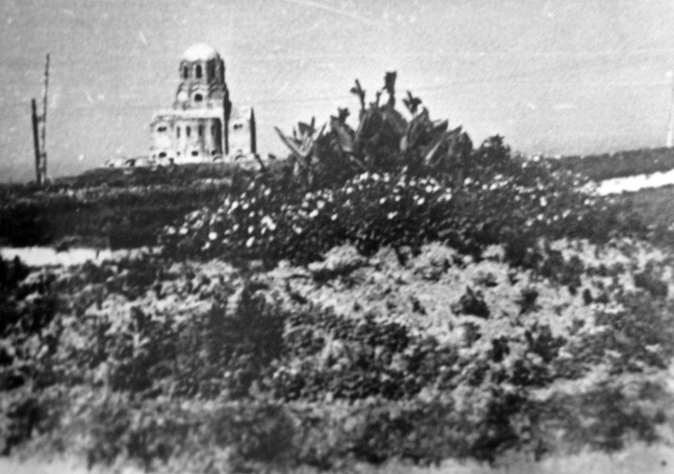 Ботанічний сад у 1940-х роках / УНІАН