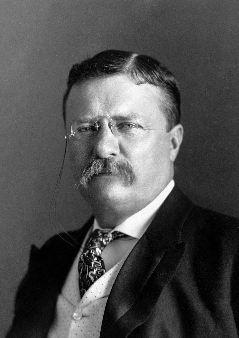 Теодор Рузвельт створив у США антиолігархічне законодавство / Wikipedia