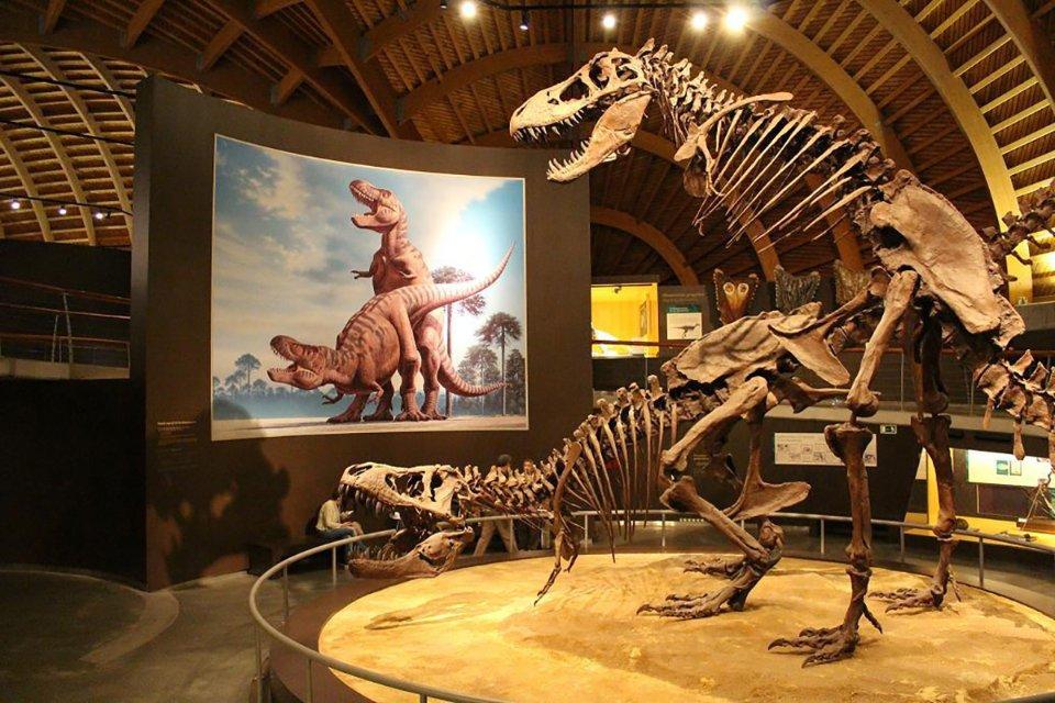 Вважається, що моторошні тиранозаври використовували свої крихітні ручки, аби чіплятися за спину самки