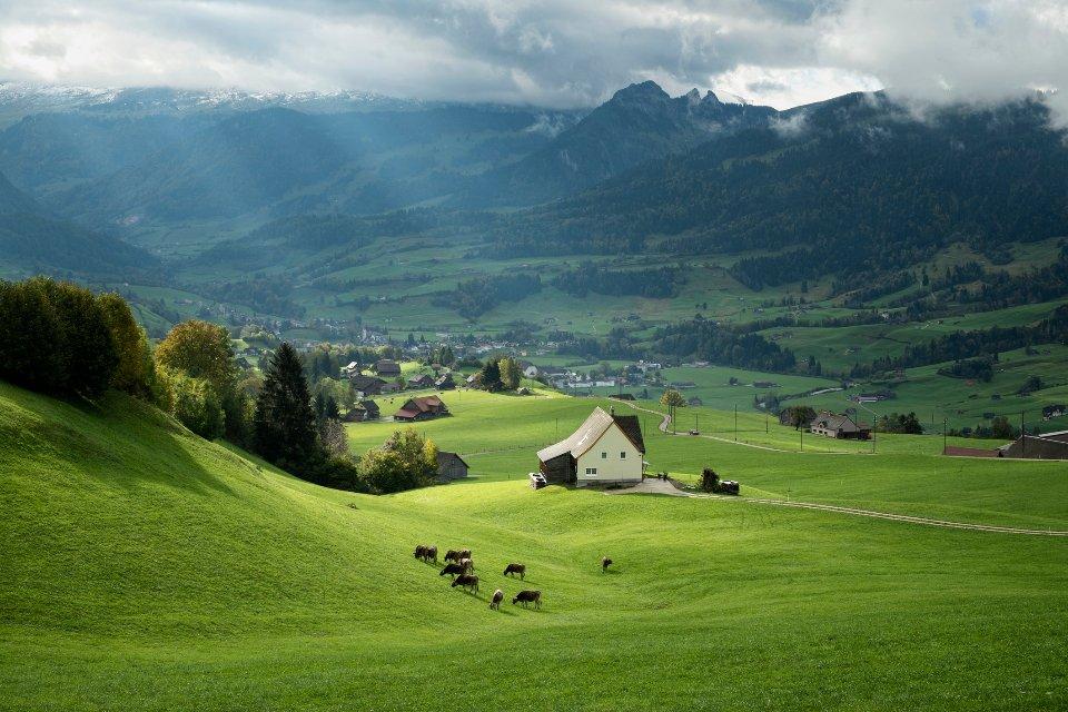У Швейцарії найдорожча у світі земля, хоча її родючисть набагато меша, ніж у української / Getty Images