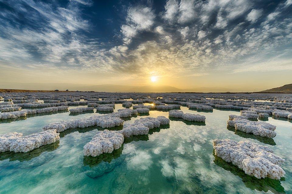 Якби з океанів зникла сіль, це призвело б до загибелі водоростей, а це катастрофічний удар по людству / Getty Images