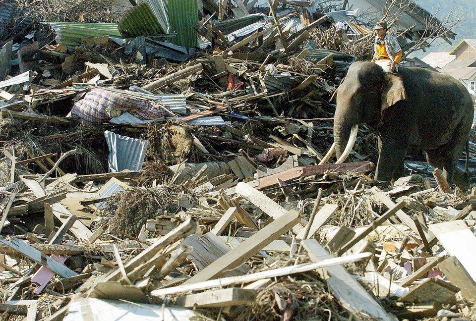 Наслідки цунамі на острові Суматра